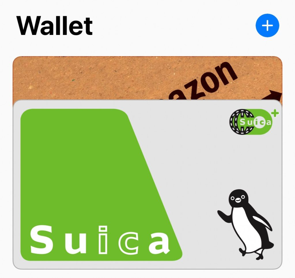 apple_pay_wallet